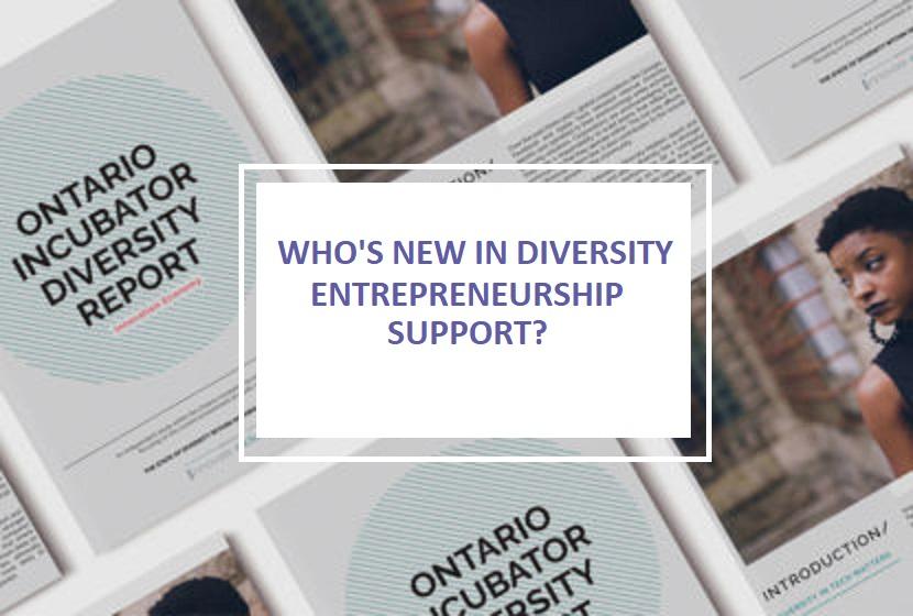 Who's new in diversity entrepreneurship support?